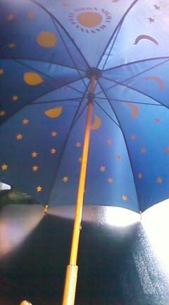 中が月の傘.jpg