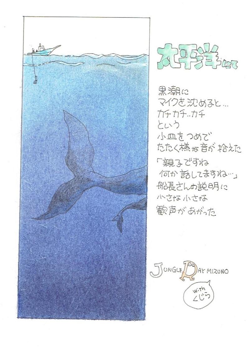 太平洋 (2).jpeg